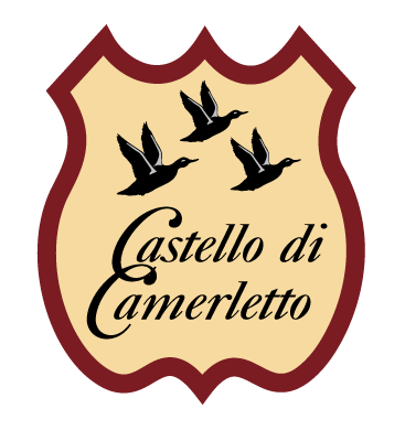 castello-camerletto-favicon